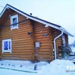 108_druby_iz_zimnego_lesa