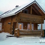 111_druby_iz_zimnego_lesa