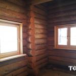 119_druby_iz_zimnego_lesa