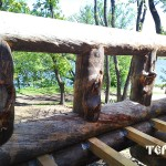 128_karelskyi_suhostoi