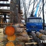 130_karelskyi_suhostoi