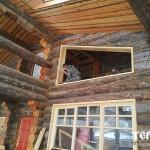 135_druby_iz_zimnego_lesa
